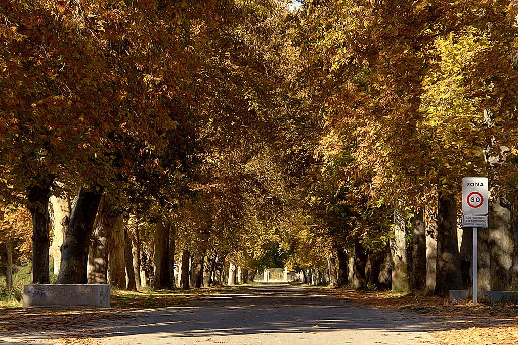 Carreteras de Aranjuez en noviembre