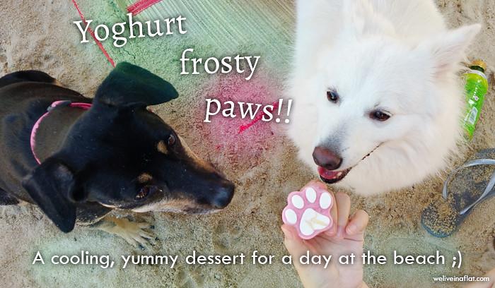 yoghurt-frosty-paws