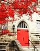 Beautiful red tree and door. #fallbeauty #churchdoor #red
