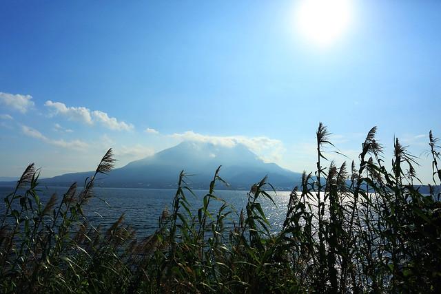 D1_火車上看櫻島