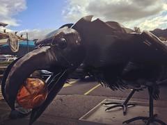 Love this sculpture! #crows #art #SalmonDays2016 #issaquah #eastside #latergram