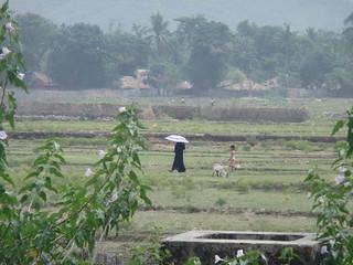 Northern Rakhine Rohingya area