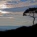 Twilight Approaching Mt. Horai-ji by jcowboy