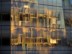 Reflections from the High Line #3