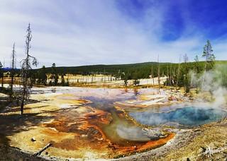 #Yellowstone #YNP #regram