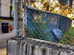 Moon rock 76055 found on fence across from AMC Theatre in Chicago