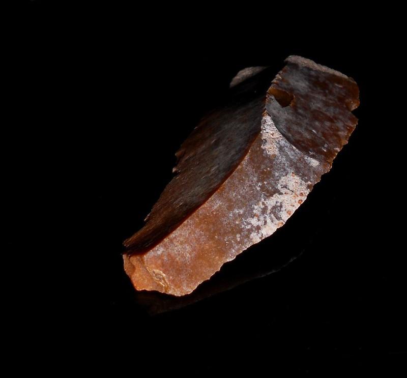 DSCN3181  lame  10 cm x 4 cm
