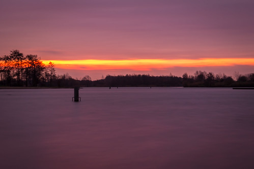 trees lake sunrise landscape bomen meer purple nederland efs1855mm nl landschap paars gelderland purplesky elst landscapephotography landschapsfotografie zonsopkomst canoneos100d paarselucht