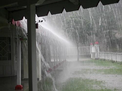 विश्व बैंक की एक रिपोर्ट के अनुसार विकासशील देशों में पानी की भारी किल्लत है