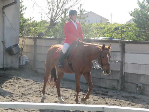 金沢競馬場の誘導馬