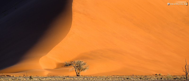 Wall of sand