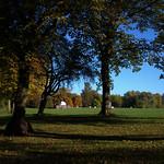 Scene in Moor Park Preston
