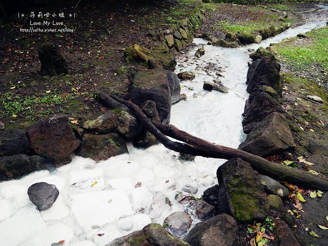 陽明山一日遊景點推薦前山公園 (18)