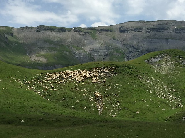 GR5 Col d'Anterne