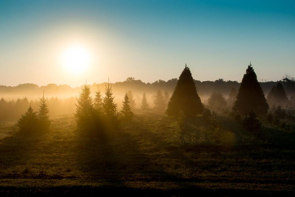 Midwest Sunrise