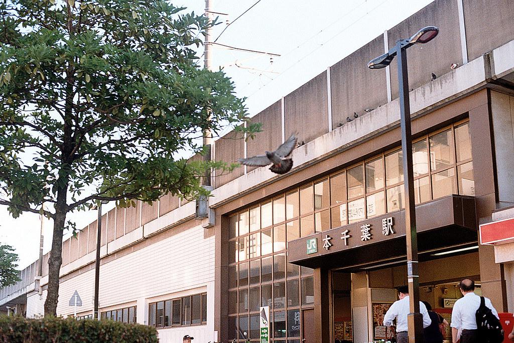 """本千葉駅 (ほんちばえき) 2015/08/05 在本千葉駅發現上面有鴿子停留,我真的等在那邊看會不會有鴿子飛起來,後來真的就一隻飛走。  Nikon FM2 / 50mm Kodak ColorPlus ISO200  <a href=""""http://blog.toomore.net/2015/08/blog-post.html"""" rel=""""noreferrer nofollow"""">blog.toomore.net/2015/08/blog-post.html</a> Photo by Toomore"""