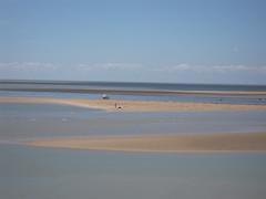 estuary, horizon, beach, sand, sea, lake, body of water, mudflat, shore,