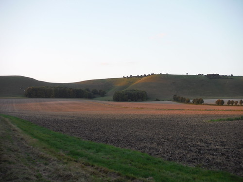 Golden Ball Hill in the evening glow