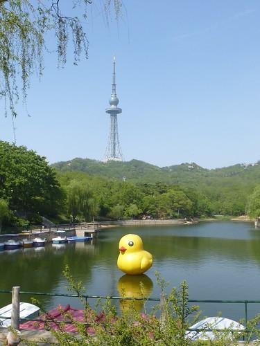 CH-Qingdao-Parc Zhongshan (11)