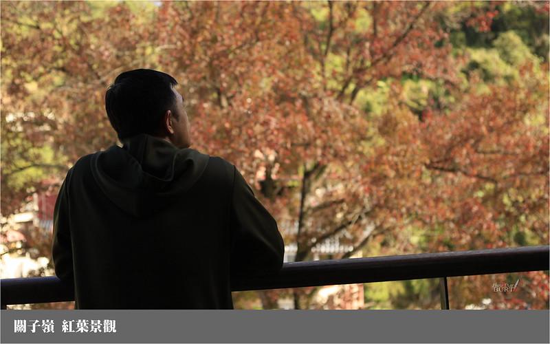 關子嶺紅葉景觀