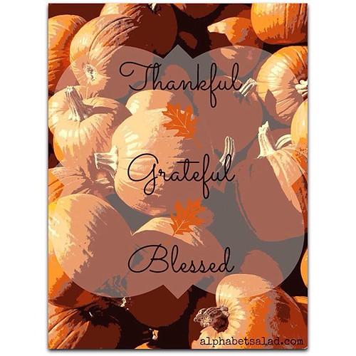 Thankful - Grateful - Blessed
