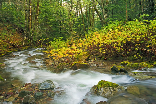 camera autumn two lake colors rain oregon creek canon lens french ian eos long exposure goin mark detroit down images ii and 5d around usm wilderness sane f4l ef1740mm