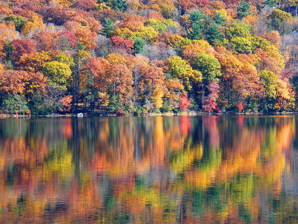 Sterling Lake Mirror