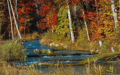 Faszination Herbst