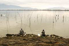 Lake Kerkini, Greece
