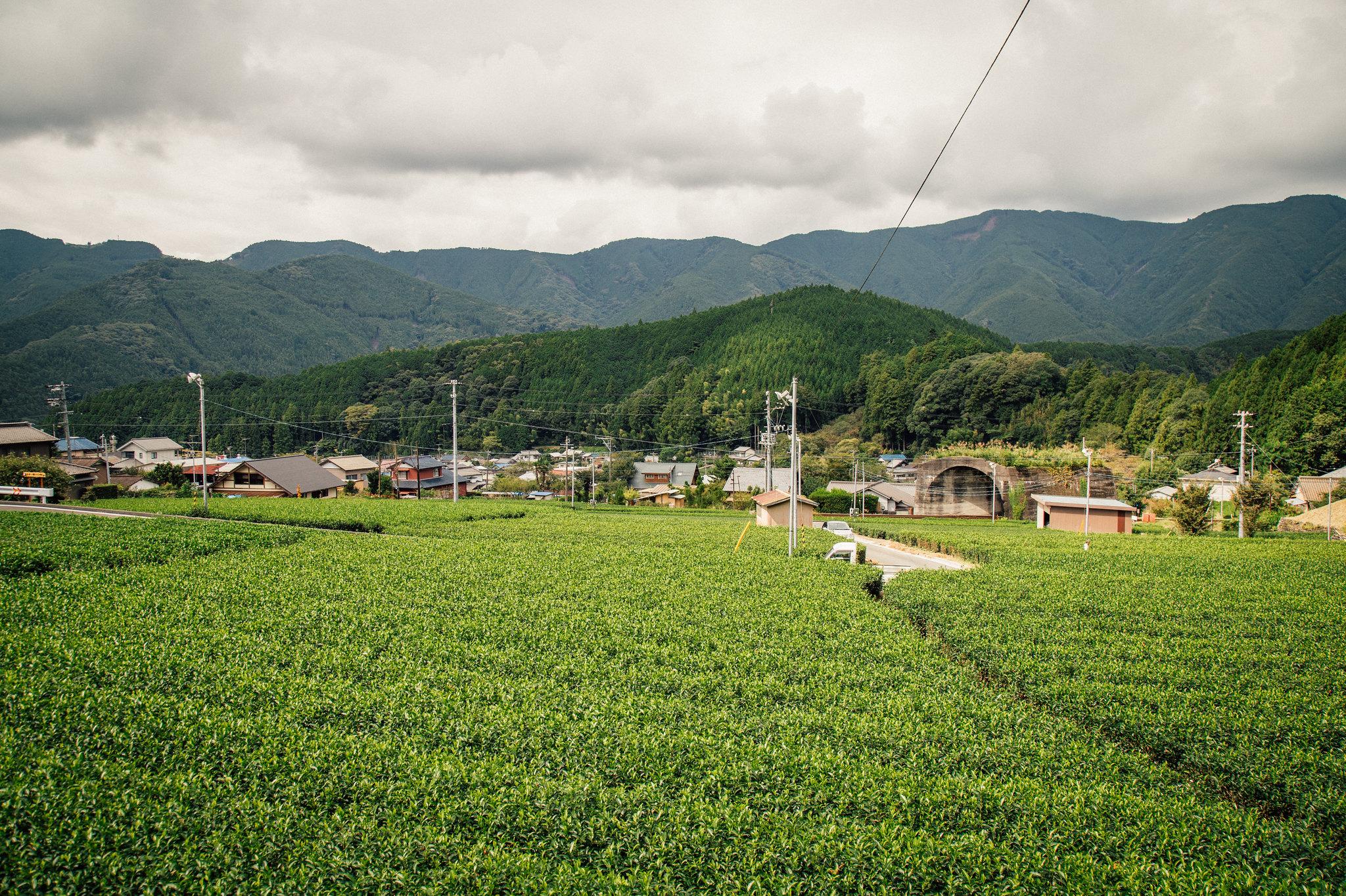2014-09-26 大井川鉄道 004