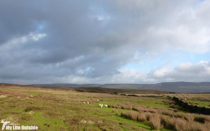 P1160892 - Above Aberdare