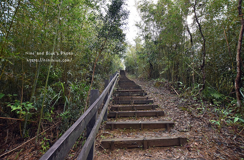 苗栗獅潭旅遊景點12