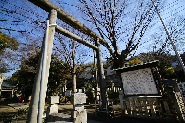 20150211-曽我丘陵-0021.jpg