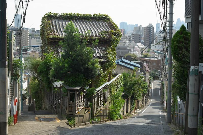 東京路地裏散歩 富士見坂 2015年9月23日
