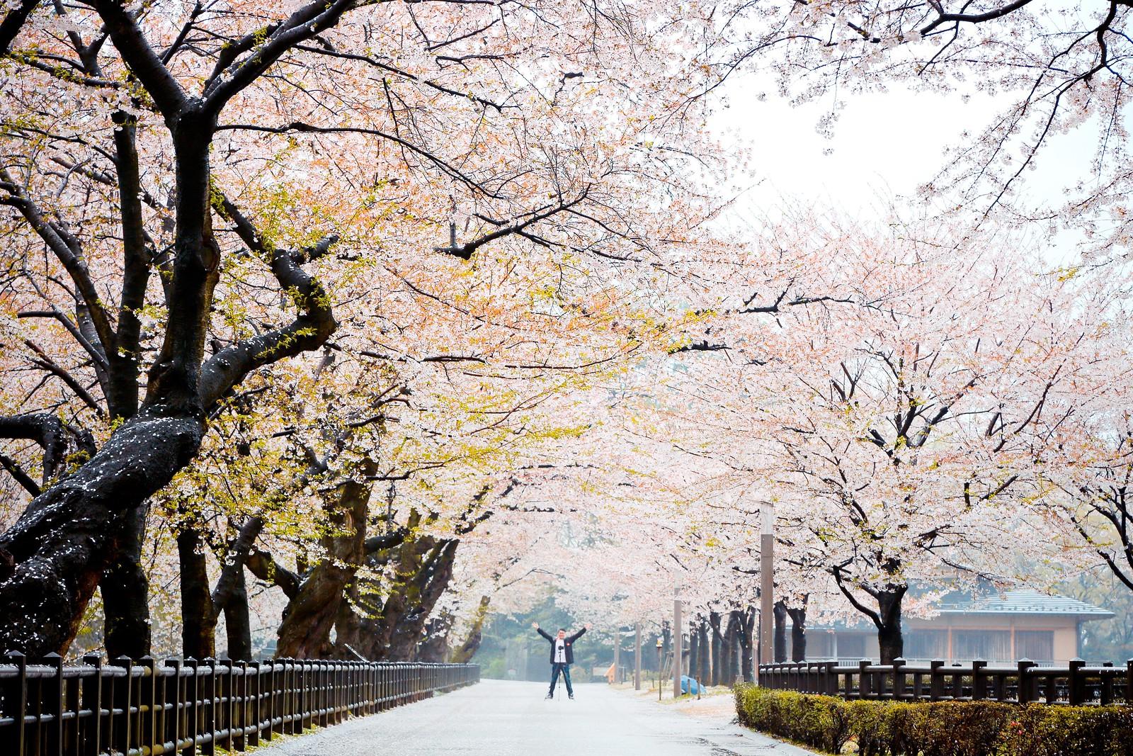Kanazawa Castle Park 金沢城公園