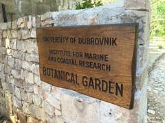 Croatia_Dubrovnik_06_Dubrovnik_Kayak_Lokrum_Mai_2015_059