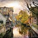 Moving at the speed of Bruges. by MisterSqueeze - (tyson robichaud)