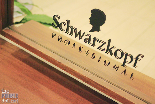 Schwarzkopf at Cedar Salon