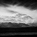 8_Denali NP-3030 by Richard Vernier