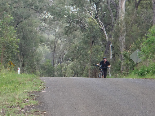 Spicers Gap Road