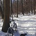 Surly Troll at Deep Creek Lake state park. by codsow
