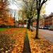 autumn in the city by atsjebosma