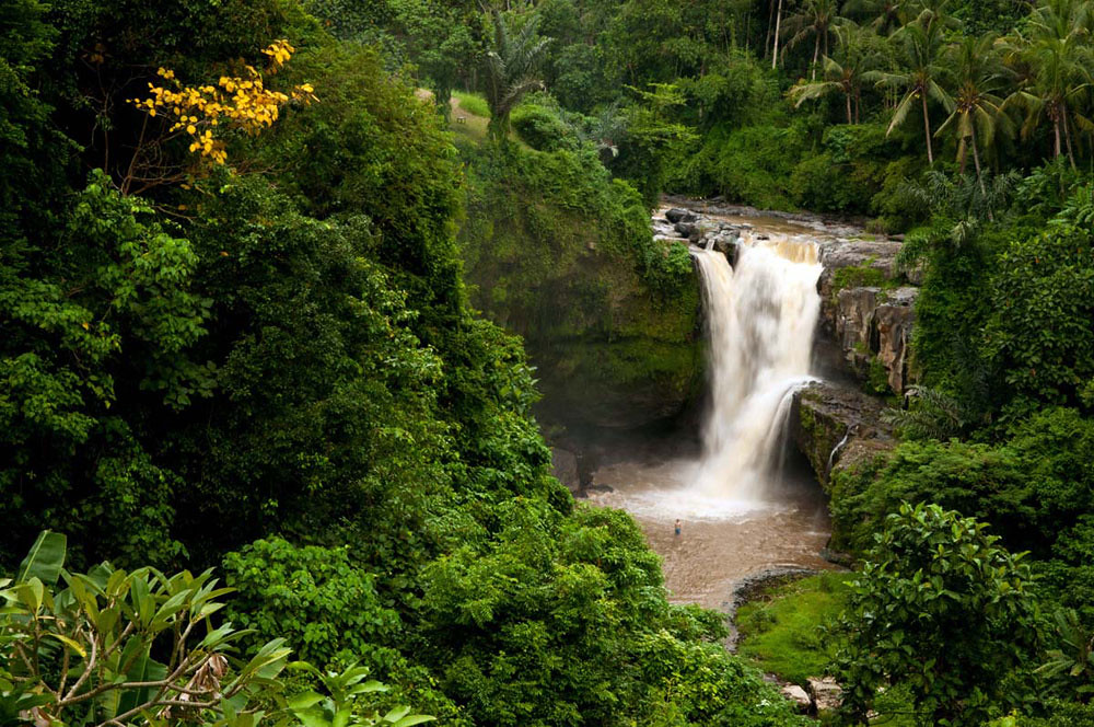 2-tegenungan-waterfall-by-eco-turizm-net