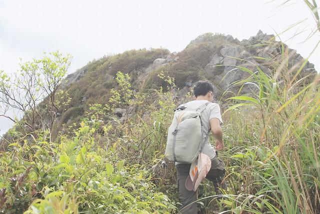 燦光寮山東側山徑