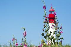 Hollyhocks and lighthouse