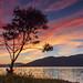 Sunset Silhouette. by Gordie Broon.