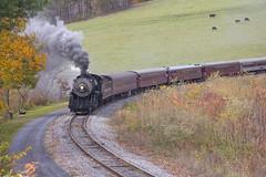 Western Maryland Scenic Railroad  (212)