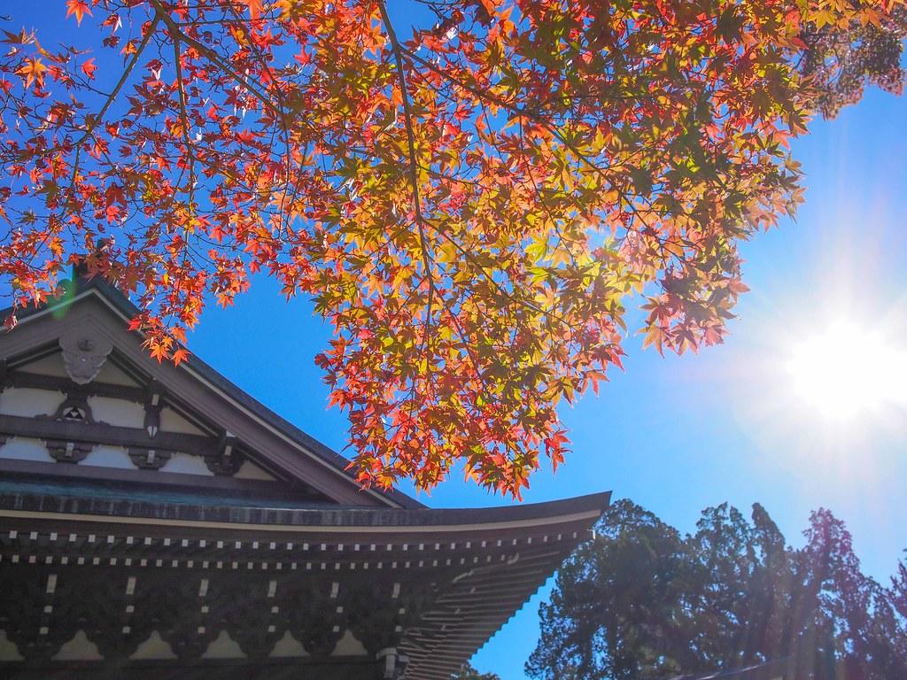 Kamakura | Engaku-ji