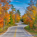 Fall into Winter - Equinox to Solstice #32 - Winding Road