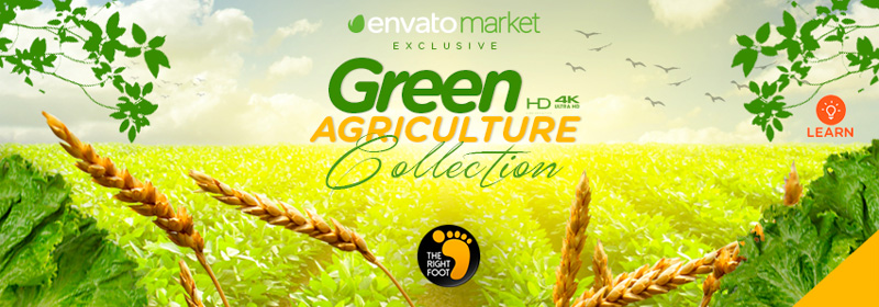 Green-Agriculture-banner